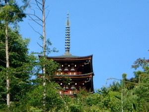 岡寺 観光ガイド