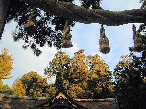 注連縄 大神神社のお正月