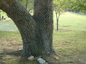 鹿よけの金網