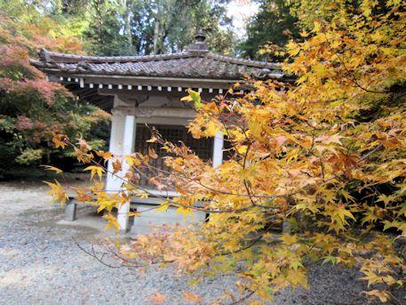 正暦寺の紅葉