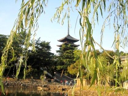 猿沢池 興福寺五重塔