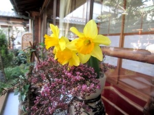 4月に咲く中庭の花