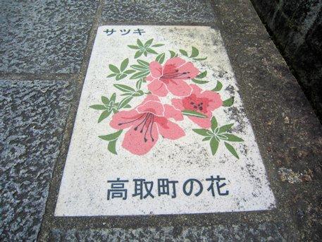 高取町の花さつき