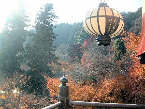 五重塔の風景