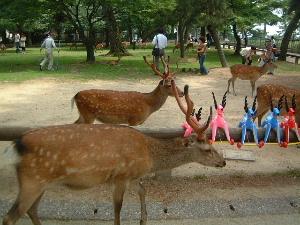 奈良公園の鹿 ビニール鹿