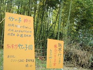 竹の子狩りの案内看板