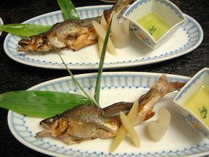 鮎のうるか焼き 鮎料理