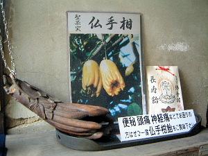 仏手柑飴 聖果実