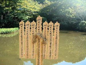 長岳寺の放生池