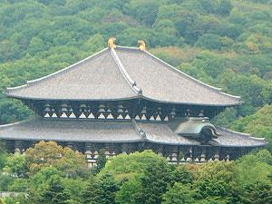 大仏殿 奈良県庁屋上からの眺め