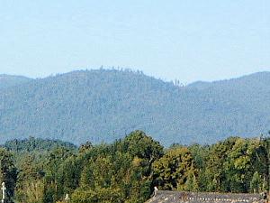大鳥の羽易の山 三輪山