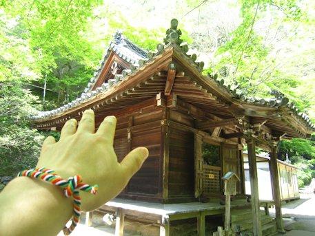 本長谷寺と結縁の五色線