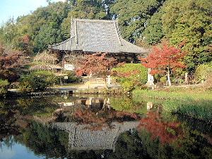 長岳寺本堂と放生池
