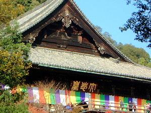 国宝の本堂 奈良県の長谷寺