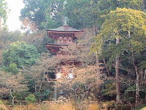三重塔 浄瑠璃寺
