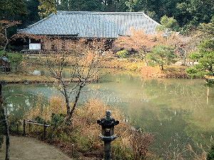 三重塔から眺める浄瑠璃寺本堂