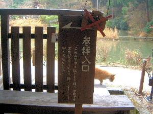 浄瑠璃寺本堂 参拝入口