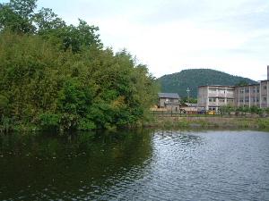 katsuyama-miwayama.JPG