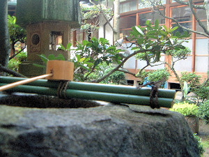 中庭 厠の手水