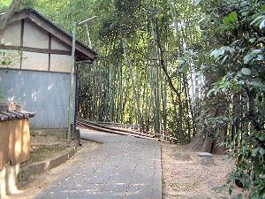 吉田寺のアプローチ