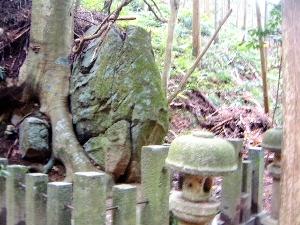 くつな石 木