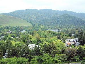 御笠山 春日山 若草山 奈良県庁の屋上緑化