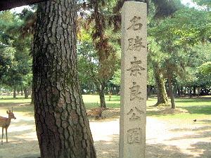 名勝 奈良公園