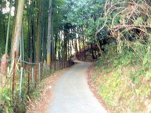 二上山登山口に続く道