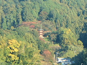 岡寺の三重宝塔