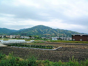 三輪山 大神神社大鳥居