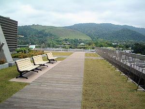 奈良県庁の屋上緑化
