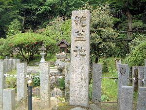 岡寺の龍蓋池
