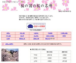 sakura-spot.jpg