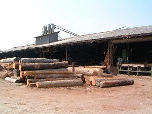 桜井市の木材