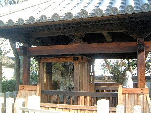 染の井 糸掛桜 石光寺