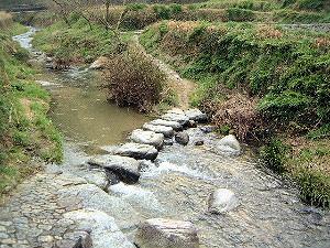 飛鳥川の飛び石