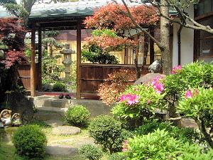 ツツジの花 大正楼中庭