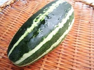 ウリ 瓜 夏野菜