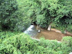 落神橋からの眺め