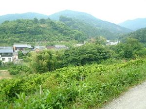 大和の青垣 風景写真