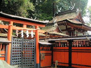 夜都岐神社の鳥居 社殿